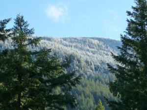 new snow on Hallowell
