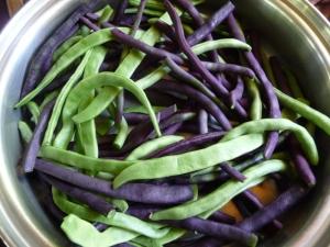 summer beans