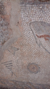 Fish mosaic  at Milreu
