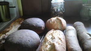 today's bread