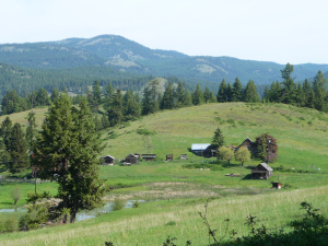 kins corner ranch