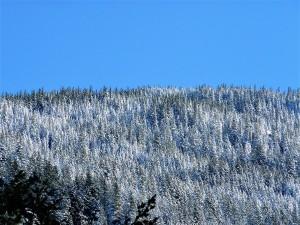 mountain, november 3