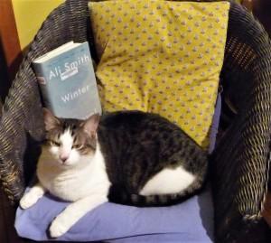 winter, reading