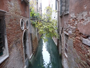 the beautiful waters of venice