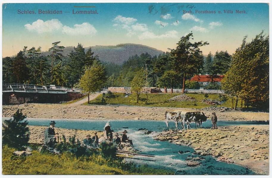 lomna_1913.jpg