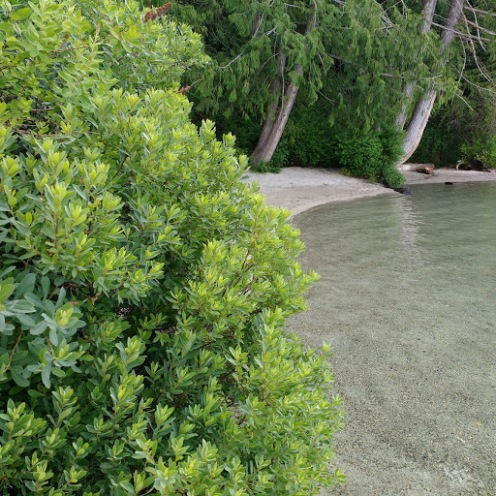 lake2 (2).jpg
