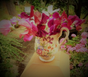sweet peas in small jug