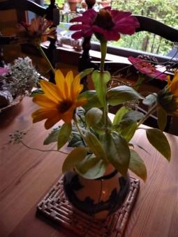 last zinnias of summer